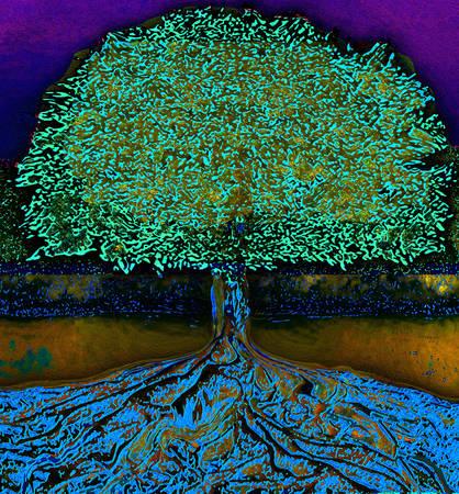 arbol de la vida: Árbol de la Vida
