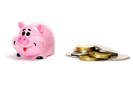 Pink pig moneybox and money over white photo