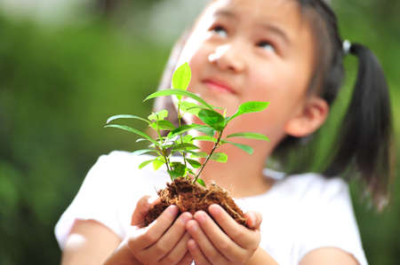 a girl holding a young plant in her hands  photo