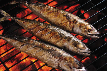 fish fire: Grilled fish on the grill , saba  Stock Photo
