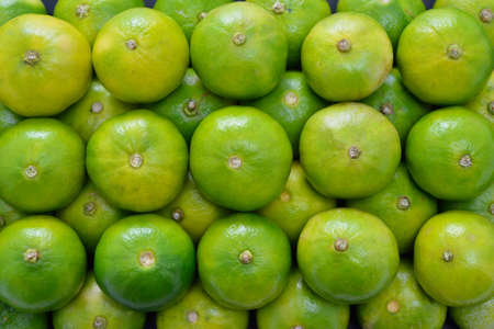 Stack of fresh lime fruits green lemon  photo