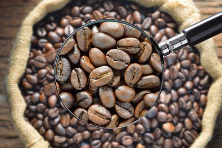 coffee beans with magnifying glass Stock Photo
