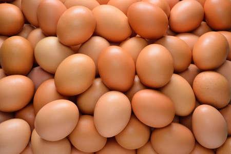 eier: Gruppe von Eiern Lizenzfreie Bilder