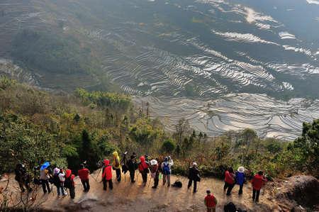 yuan yang: Tourists enjoying the view of rice terraces  Yuan Yang, China