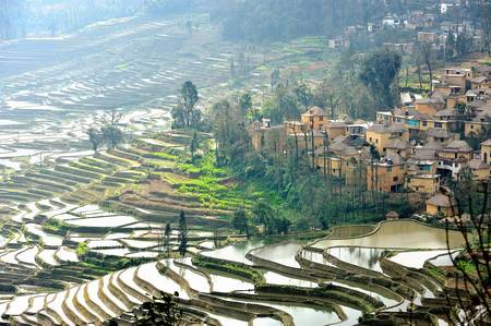 terraced: Rice terraces and village on hillside, Yuan Yang , China