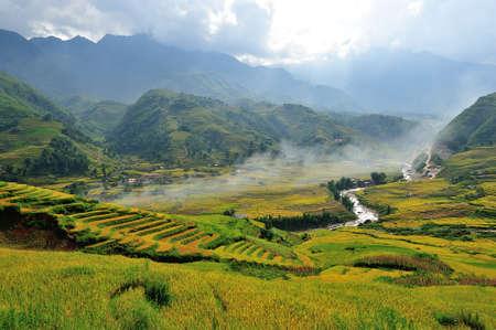 Rice terraces in Sapa, Vietnam photo