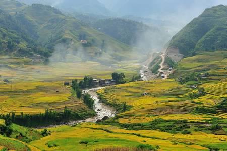Rice terraces field and mountain view, Sapa, Vietnam photo