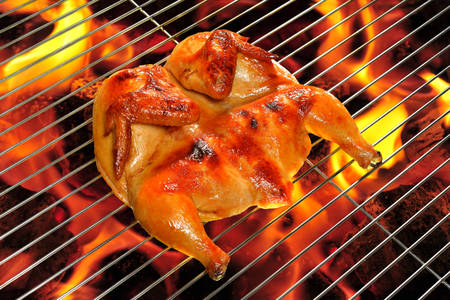 roast chicken: Grilled chicken on the flaming grill