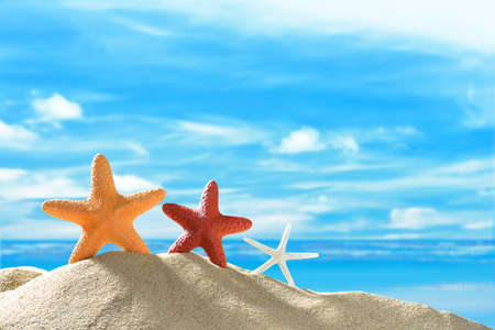 summer holidays: Starfish on the sandy beach in summer with blue sea and sky travel icon Stock Photo