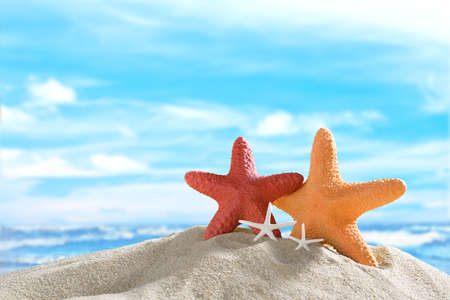 sunshine background: Starfish on the sandy beach in summer with blue sea and sky travel icon Stock Photo