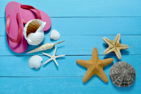 seashell: Flip flops with starfish and seashells on wooden background
