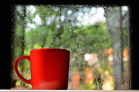 Cup of coffee on a rainy day window background Imagens - 48864239