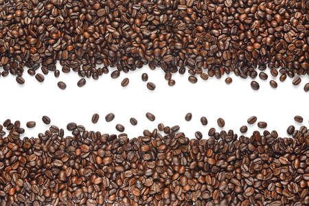 Coffee beans isolated on white background,white space can be widen