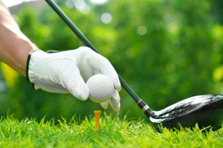 Golfer's hand holding golf ball with driver on green grass with golf course background Archivio Fotografico