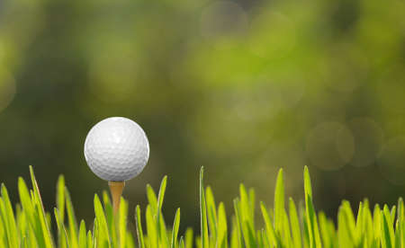 course: Golf ball with tee on green grass Stock Photo