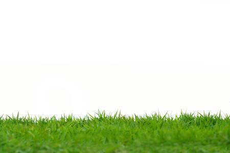흰색 배경에 고립 된 녹색 잔디 초원 필드