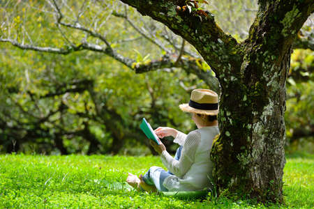 Middle aged woman sitting under a tree reading a book in the park