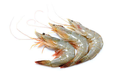 Fresh shrimps,prawns isolated on white background