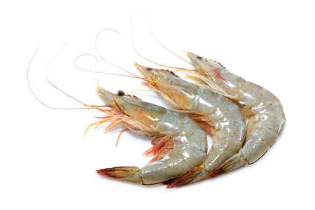 Fresh shrimps,prawns isolated on white background