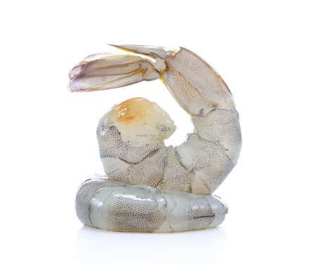 신선한 새우, 흰색 배경에 고립 된 새우