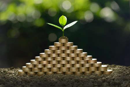 Beeld van stapel van muntstukken met installatie op bovenkant voor zaken, besparing, de groei, economisch concept Stockfoto - 90301668