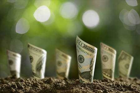 Image of rolled bank notes on soil for business, saving, growth, economic concept