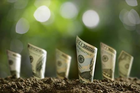 Image de billets de banque roulés sur le sol pour les affaires, l'épargne, la croissance, le concept économique Banque d'images
