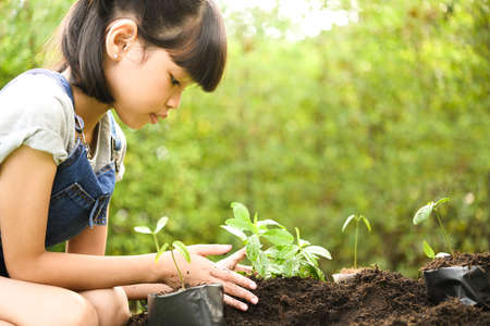 A girl planting young plants on soil 스톡 콘텐츠