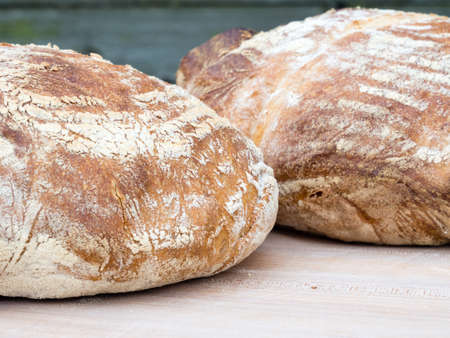 french boule: Two round french boule breads