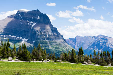 Alpine scenery at Logan pass in Glacier National Park, USA