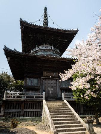 Cherry blossoms in Ryozenji, temple number 1 of Shikoku pilgrimage Editorial