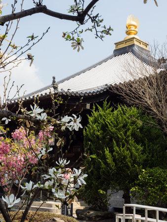On the grounds of Ryozenji, temple number 1 of Shikoku-henro pilgrimage