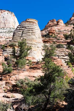 Sandstone rock formations at Zion National Park - Utah, USA