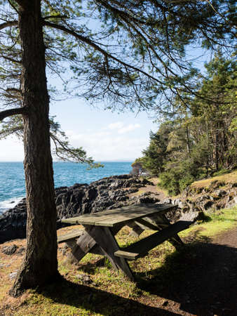 Picnic table along the hiking trail in Lime Kiln Point State Park on San Juan Island - WA, USA