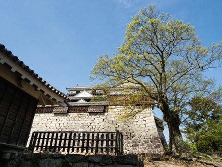 Matsuyama, Ehime prefecture, Japan - April 11, 2018: Springtime on the grounds of historic Matsuyama Castle
