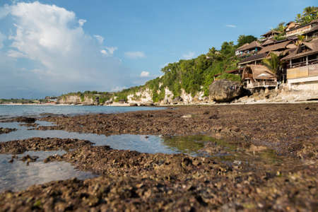 great barrier reef marine park: Beautiful reef at low tide in the ocean. Bali. Bingin Stock Photo