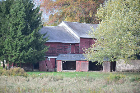 old red barn: old red barn in the woods