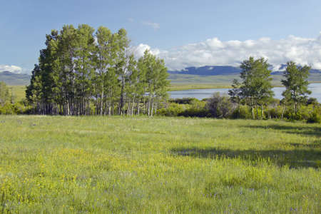 lakeview: Red Rock Lake in Centennial Valley near Lakeview, MT Stock Photo