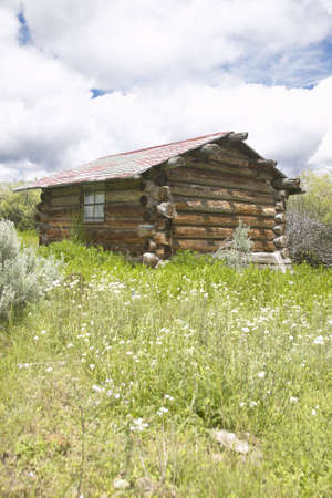 Deserted old homestead in summer in Centennial Valley near Lakeview, MT photo