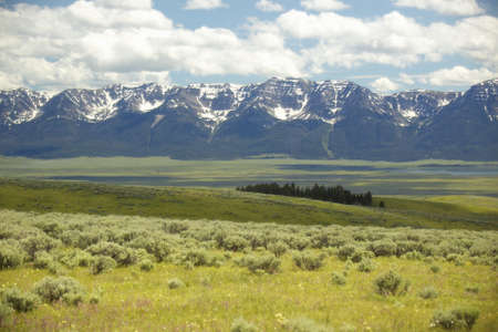 lakeview: Spring grasslands and flowers in Centennial Valley near Lakeview, MT Stock Photo