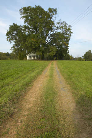 ga: Dirt Road and tire tracks leading to country home in Central GA Southeast USA