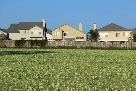 encroaching: Farmers fields with crops by encroaching housing development subdivision in Santa Paula, CA Editorial