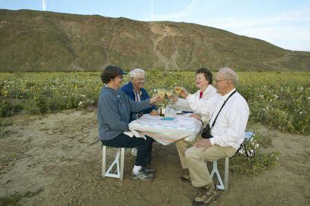 wine road: Four senior citizens drinking white wine in field of spring desert gold yellow flowers near Henderson Road in Anza-Borrego Desert State Park, CA