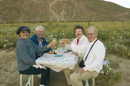 wine road: Four senior citizens drinking white wine in field of spring desert gold yellow flowers near Henderson Road in Anza-Borrego Desert State Park, CA