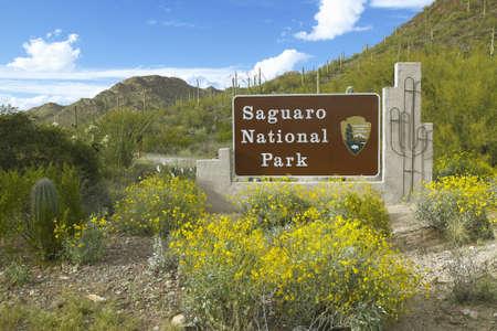sonoran: Saguaro National Park West, Tucson, AZ Welcome Sign features giant Sonoran saguaro cactus Editorial