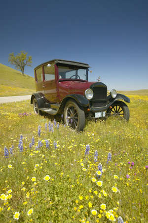 t off: A maroon Model T driving down a scenic road surrounded by spring flowers off of Route 58, Shell Road, CA
