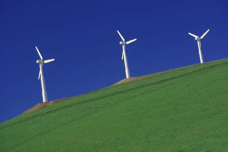 Wind turbines on a hill, Altamont Pass, California
