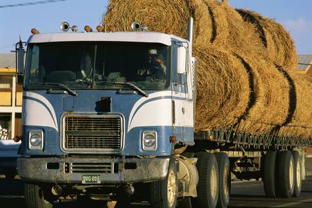 Semi truck with load of hay