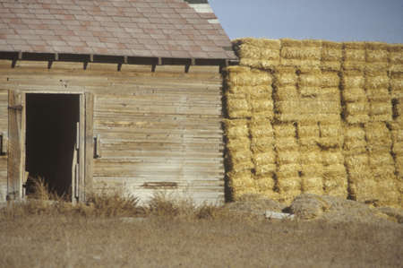 Haystacks next to an old barn in Southern UT Stock Photo - 19996502