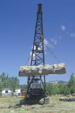 lumber mill: A crane raising a weathered log as part of a reenactment of the workings of a 19th century lumber mill